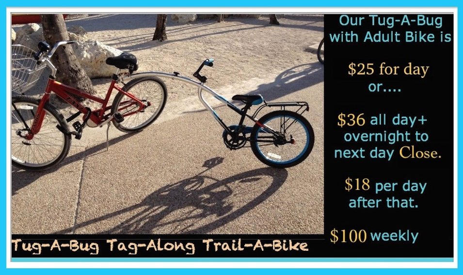 trail a bike price